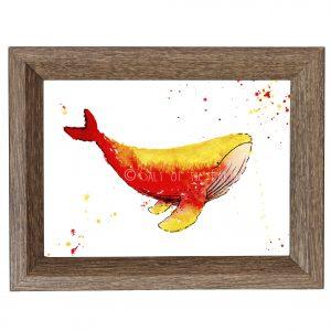 Whale Art Watercolour Print - Red